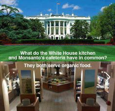 Whitehouse Serves Organic