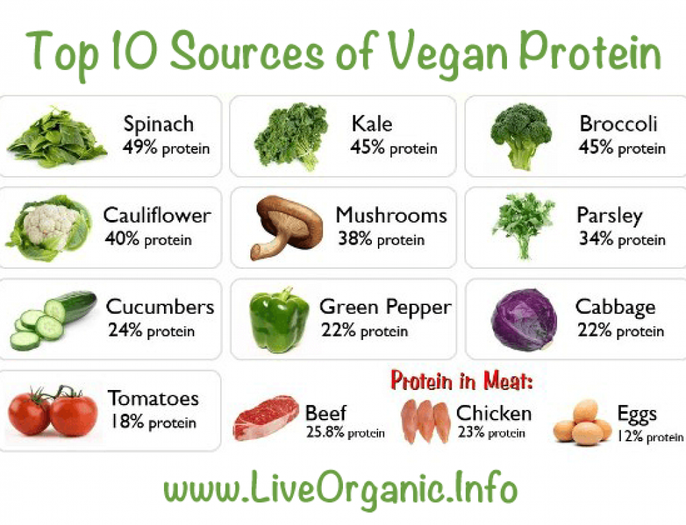 Why choose the Master Amino Acid Pattern over meat?