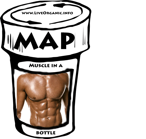 Muscle in a Bottle